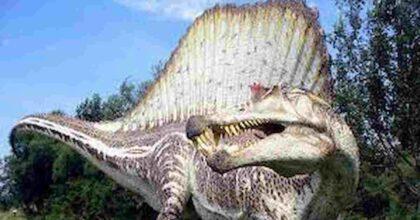 Dinosauri, gli spinosauri con il muso di coccodrillo sono comparsi in Europa 150 milioni di anni fa