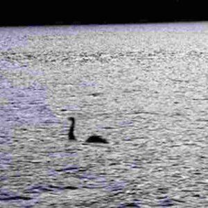 Mostro di Loch Ness, nuovo avvistamento: immagine catturata da un radar sottomarino