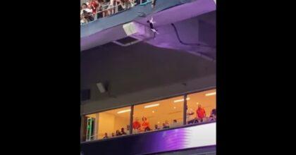 Miami, il gatto cade dalla tribuna dello stadio e viene salvato con una bandiera VIDEO