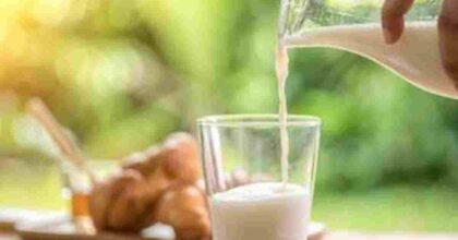 Latte parzialmente scremato, il numero dei lotti ritirati dal mercato per un rischio chimico