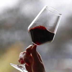 malattie cardiache vino